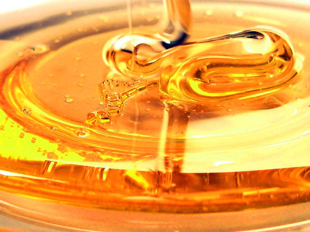 Mostre del miele…olio e vini
