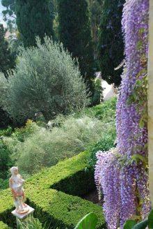 Villa della Pergola_12Archivio GiardinidiVilladellaPergola_b (1)